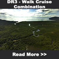 Walk Cruise Combination Toiur