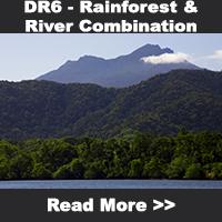 Daintree Rainforest & River Combination Tour