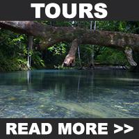 Cooper Creek Wilderness Tours