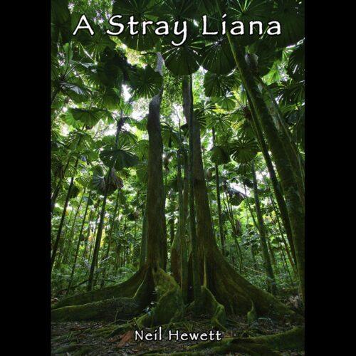 DR1 A Stray Liana
