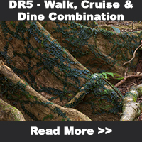 Walk, Cruise & Dine Combiantion