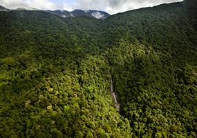 Cooper Creek Wilderness