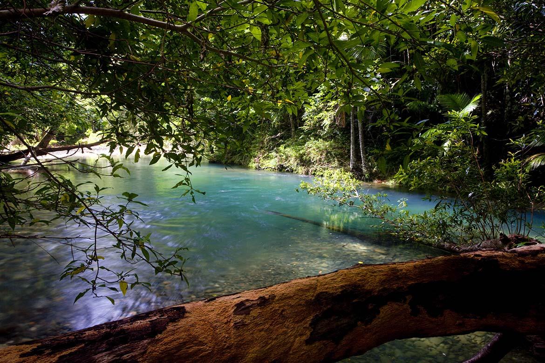 Cooper Creek Wilderness Experience